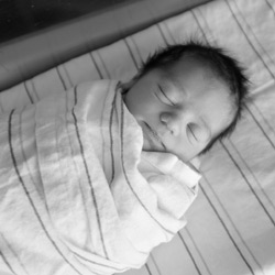 Meet Baby Roman