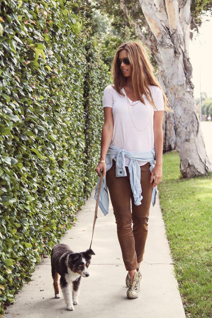 lydia_mcLaughlin_dog_walk